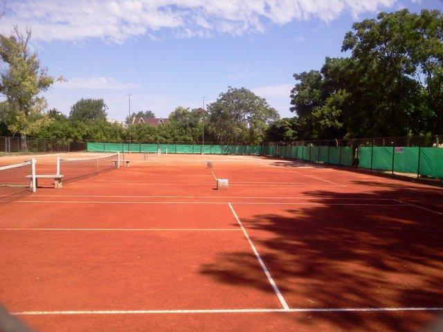 Resultado de imagen para tenis canchas